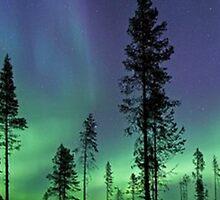 Aurora Skye by ohmyglob