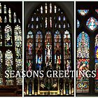 Seasons Greetings by David  Barker