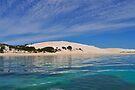 The White Sandhills by Ian Berry