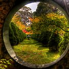 Wonderland - Bisley Gardens - Mt Wilson NSW Australia by Brad Woodman