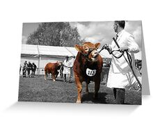 Northumberland Show 2012 Greeting Card
