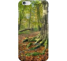 Lickey Hills, Worcestershire iPhone Case/Skin