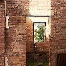The Window and the Bricks by Peter Gray