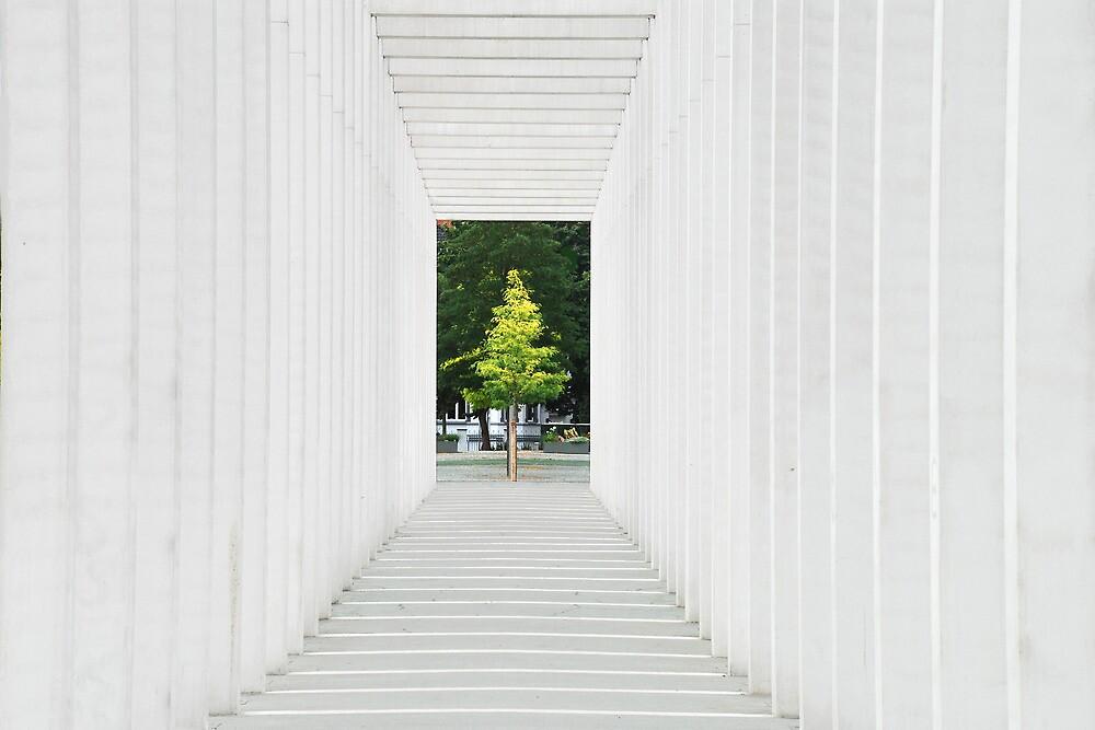 An artistric pathway in Schwerin - Germany by Arie Koene