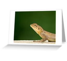 Lizard head and front legs Greeting Card