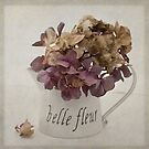 Belle Fleure by inkedsandra