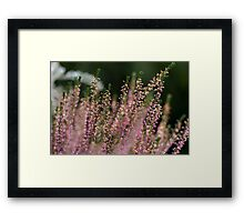 Erika bush Framed Print