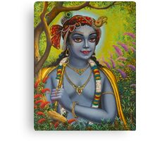 Shree Krishna Canvas Print