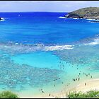 Hanauma Bay by kcy011