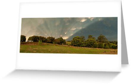Mt Eccles farm, South Gippsland - December 2011 by Matthew Lokot