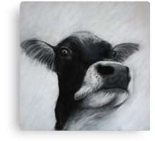 Holy Cow. Canvas Print