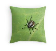 Common Green Shield Bug 2nd Instar Throw Pillow