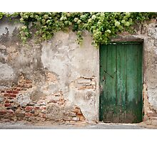 Krems: The Green Door Photographic Print