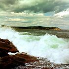 THE COAST OF MAINE  by katemmo