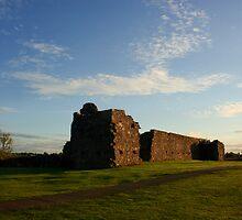 The Castle by Adrian McGlynn