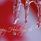 Happy Holidays, Eh! by Mark Iocchelli