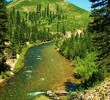 North Fork of The Boise River by CADavis