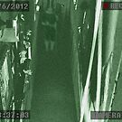 Mackinaw Manor Security Cam by bradydhebert