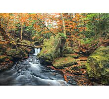 Above Mohawk Falls October 2012 Photographic Print