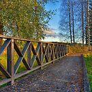 Autumn path - HDR by ilpo laurila