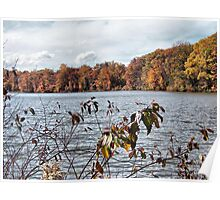 Lake Newport in Autumn Poster