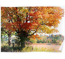 autumn landscape.. Poster