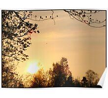May Sun Poster