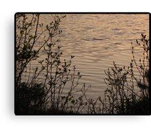 May Water Canvas Print