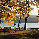 Honeoye Autumn by Raider6569