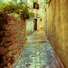 Stones and Walls by Jasna