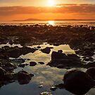 paradise at rocky beal beach by morrbyte