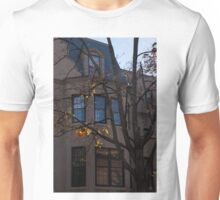 Washington, DC Facades - Dupont Circle Neighborhood  Unisex T-Shirt