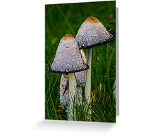 Cosy fungi Greeting Card