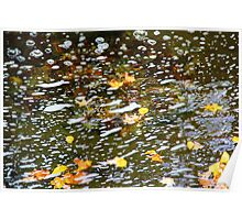 Floating Foliage Poster