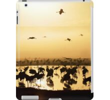 Common crane (Grus grus) Silhouetted at dawn iPad Case/Skin