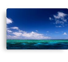MCC Great Barrier Reef Canvas Print