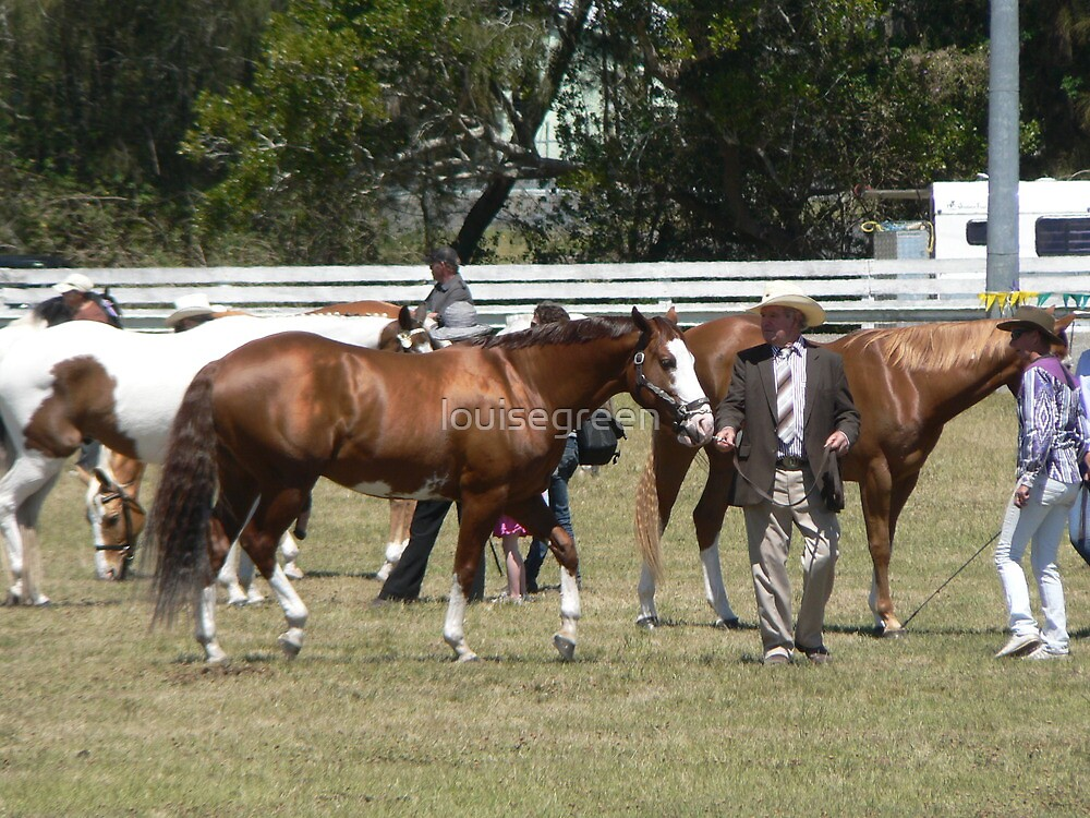 Paint Horses - Taree Show 2012 by louisegreen