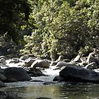MCC Mossman Gorge by Mossman  Community Centre