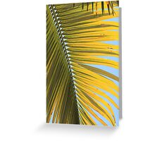 MCC Palm Greeting Card