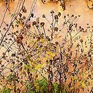 Wintry Weeds 3...........................Most Products by Fara