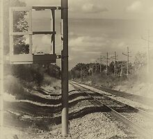 On the Right Track by Victoria Jostes