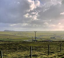 The Shetland South ( 1 ) by Larry Lingard-Davis