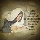 Luke 2:19-biblical by vigor