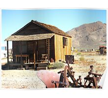 Desert Abode Poster