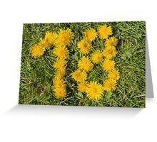 number eighteen designed with dandelion on the lawn Greeting Card