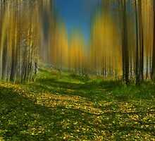 4064 by peter holme III