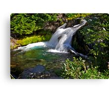 Paradise Creek Waterfall Canvas Print