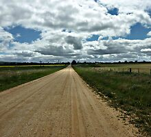 Along a Country Road - Balliang, Vic. by EdsMum