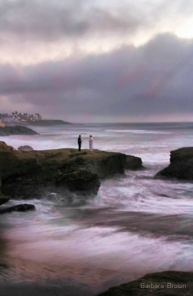 On Sunset Cliffs by Barbara  Brown