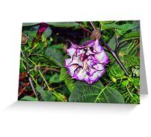 Purple Power Wrinkle Greeting Card